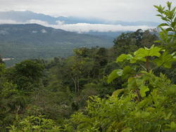 Équateur, de Puyo à Tena