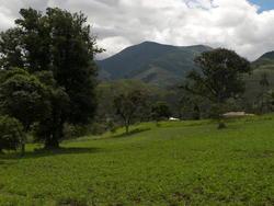 Équateur, Pallatanga